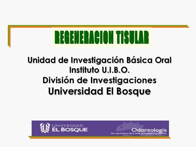 Unidad de Investigación Básica Oral         Instituto U.I.B.O.   División de Investigaciones    Universidad El Bosque