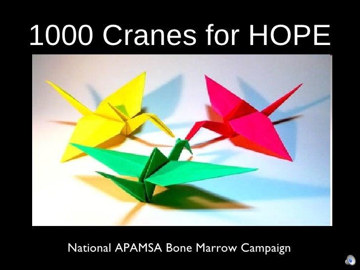 1000 Cranes for HOPE <ul><li>National APAMSA Bone Marrow Campaign </li></ul>