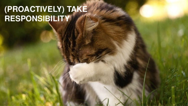 (PROACTIVELY) TAKE RESPONSIBILITY