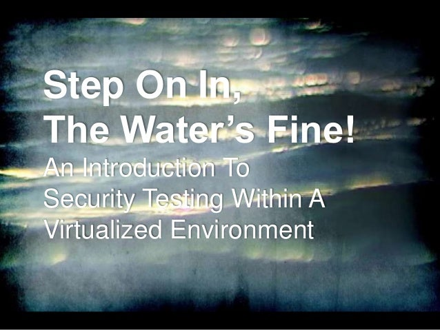 Step On In, The Water's Fine! An Introduction To Security Testing Within A Virtualized Environment