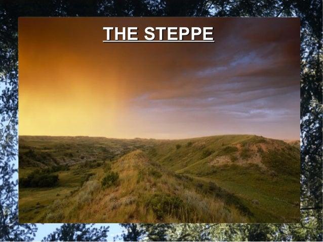 THE STEPPETHE STEPPE