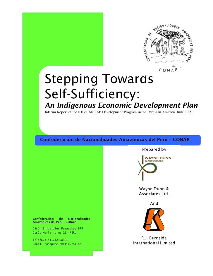 Stepping Towards       Self-Sufficiency:       An Indigenous Economic Development Plan       Interim Report of the IDB/CAN...