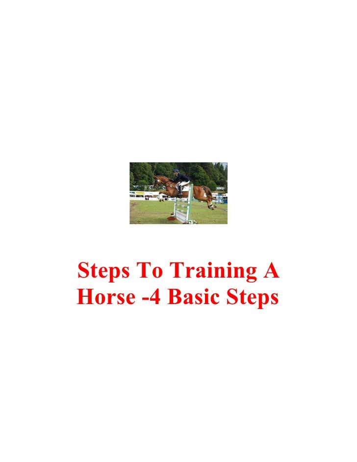 Steps To Training A Horse -4 Basic Steps
