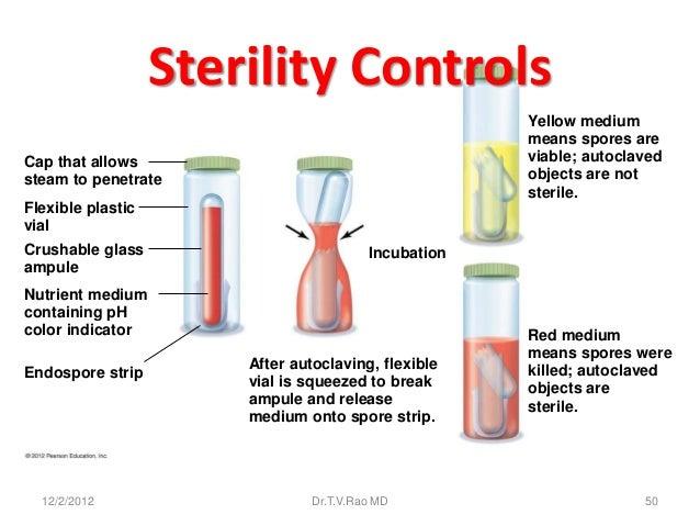 Sterility Controls                                                     Yellow medium                                      ...