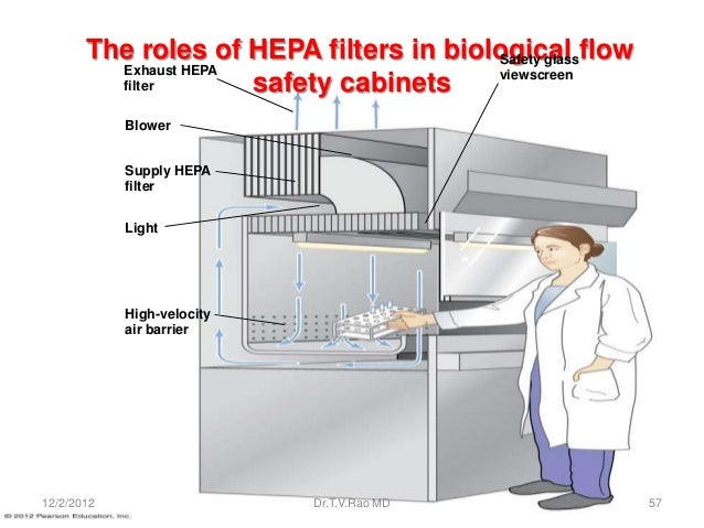 The roles of HEPA filters in biological flow                                        Safety glass         Exhaust HEPA     ...