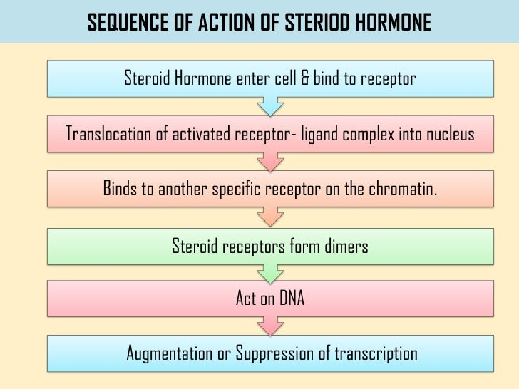 non-steroid nuclear receptors