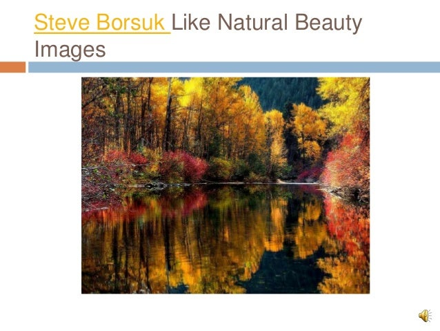 Steve Borsuk Like Natural Beauty Images