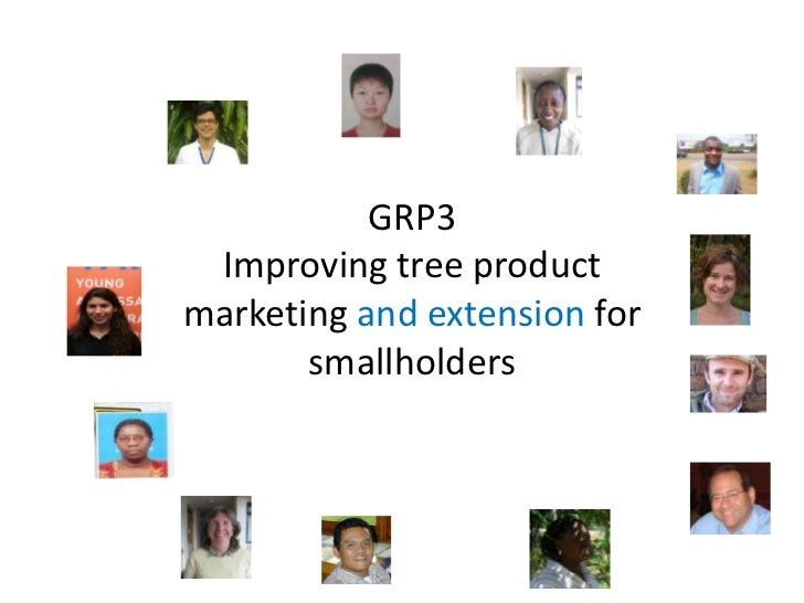 GRP3  <br />Improving tree product marketing and extension for smallholders<br />