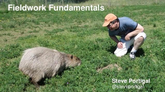 1 Fieldwork Fundamentals Steve Portigal @steveportigal