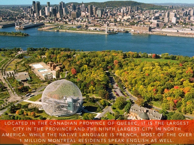 Steve Rice: Plan A Trip To Montreal Slide 3