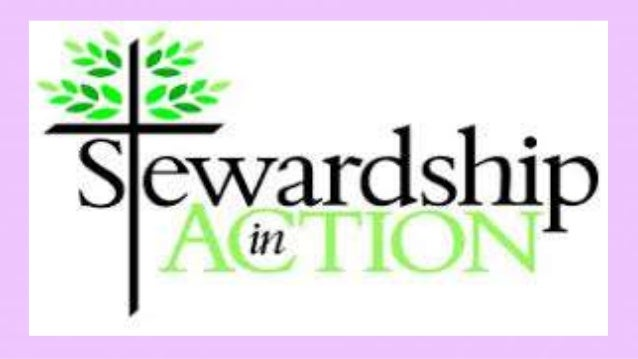 stewardship noun the job of supervising or taking care of something, such as an organization or property.