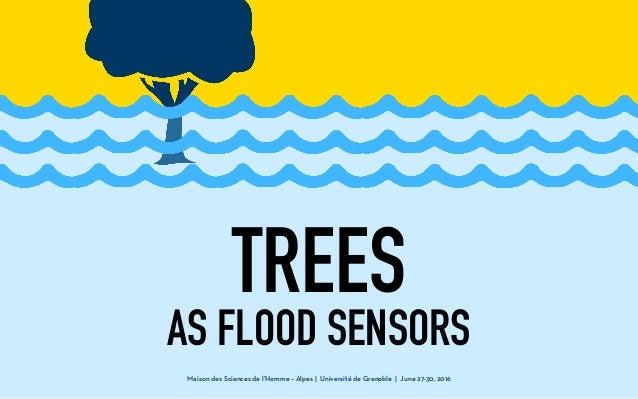 Maison des Sciences de l'Homme – Alpes | Université de Grenoble | June 27-30, 2016 TREES AS FLOOD SENSORS