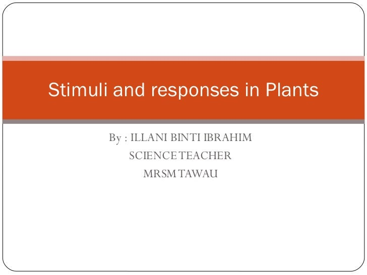 By : ILLANI BINTI IBRAHIM SCIENCE TEACHER MRSM TAWAU Stimuli and responses in Plants