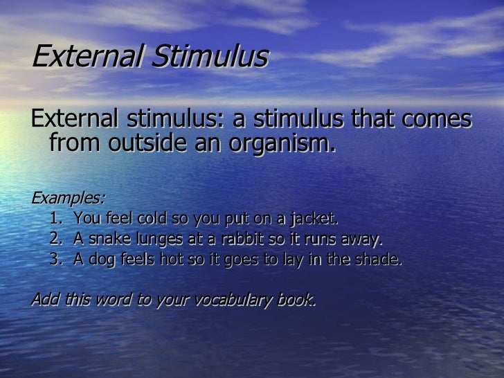 Stimulus And Response