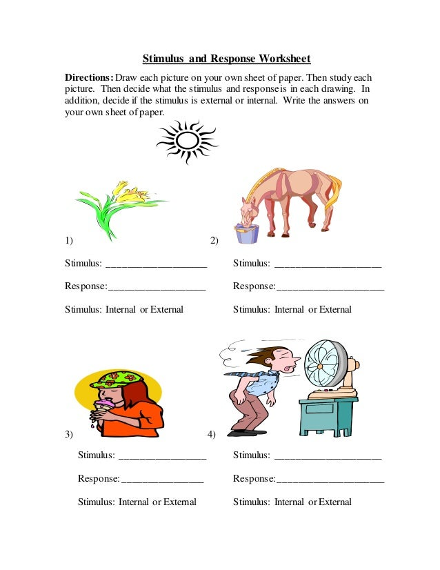 Stimulus and Response Worksheet Directions: Draw each picture on your own sheet of paper. Then study each picture. Then de...