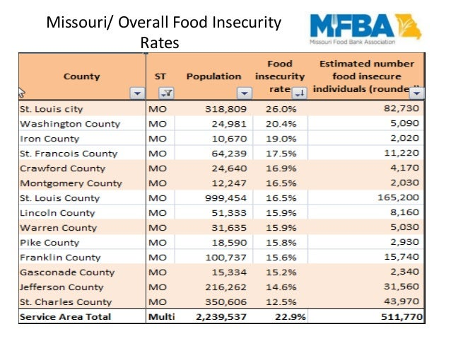 Missouri Food Stamp Income Guidelines