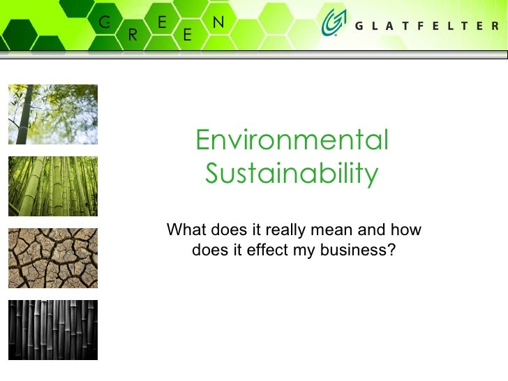 Environmental Sustainability What does it really mean and how does it effect my business?