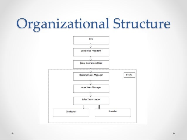 Sales Force Structure at Hindusthan Coca Cola Pvt Ltd