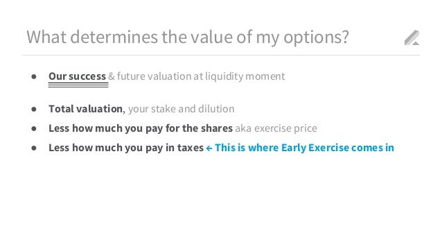 What is a net exercise stock options
