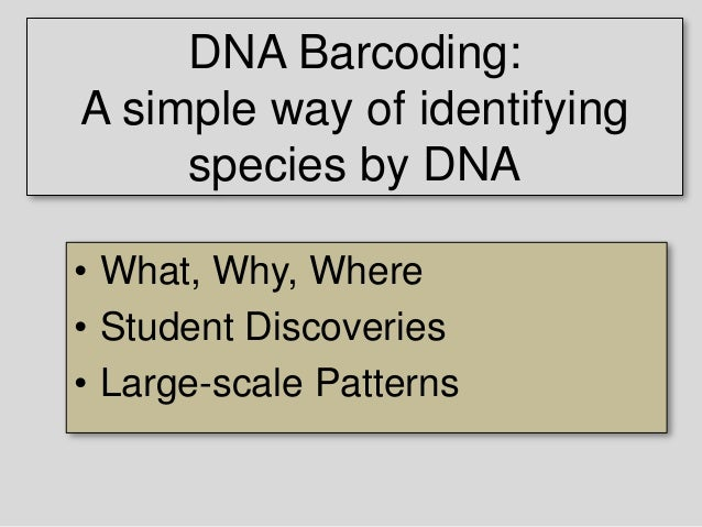 DNA Barcoding: A simple way of identifying species by DNA Mark Y. Stoeckle, M.D. Program for the Human Environment The Roc...