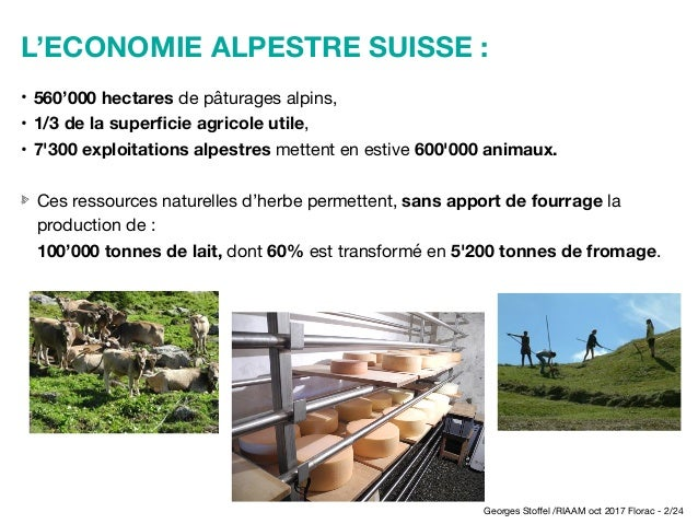 Les grands prédateurs et les alpages pastoraux en Suisse - STOFFEL Slide 2