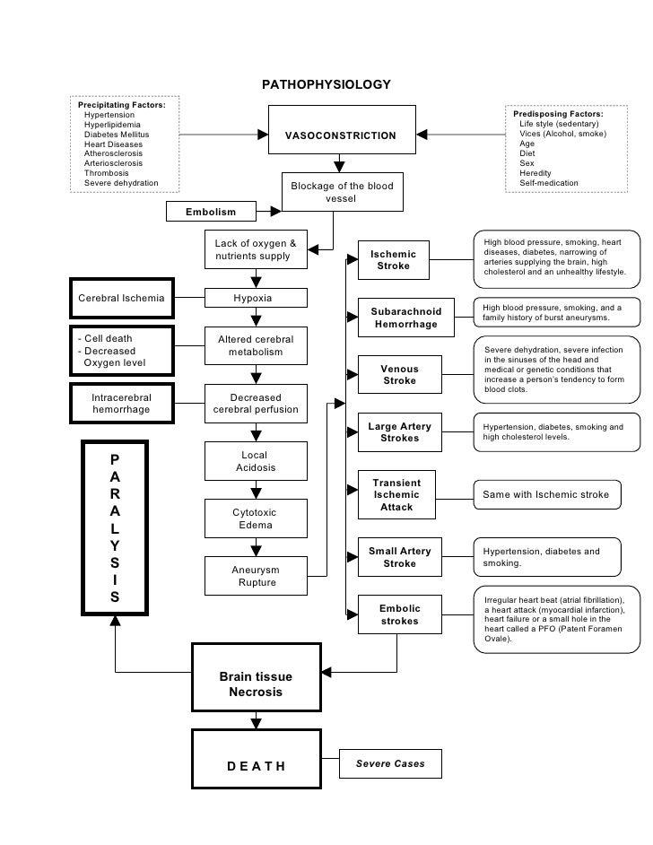 stoke pathophysiology