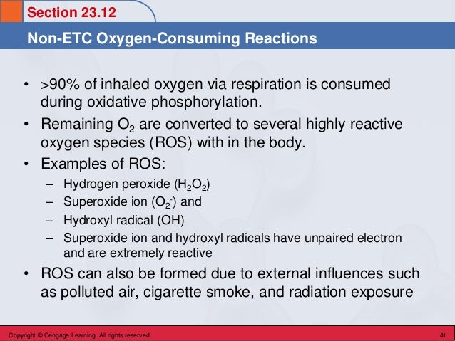 Section 23.12 Non-ETC Oxygen-Consuming Reactions Copyright © Cengage Learning. All rights reserved 41 • >90% of inhaled ox...