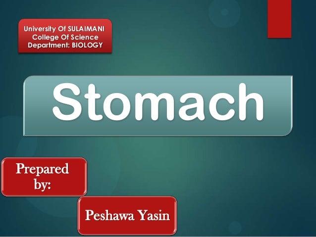 University Of SULAIMANI   College Of Science  Department: BIOLOGY        StomachPrepared   by:                  Peshawa Ya...