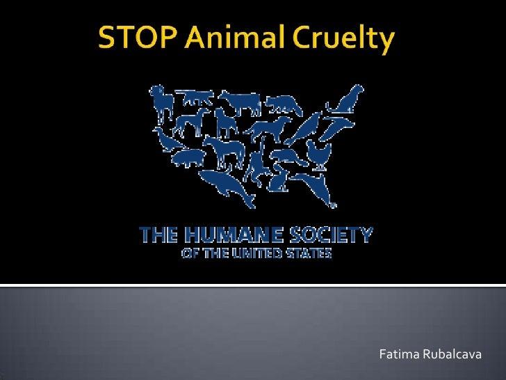 STOP Animal Cruelty<br />Fatima Rubalcava <br />