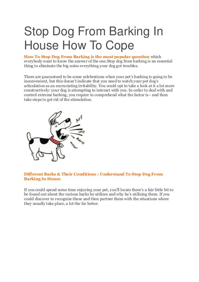 Stop Dog From Barking In House How To Cope How To Stop Dog From Barking is the most popular question which everybody want ...