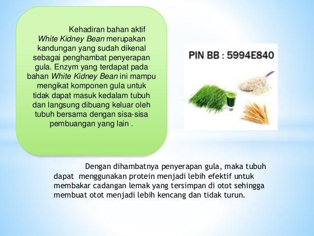 PIN BBM 5994E840, Obat Diet Yang Bagus Tanpa Efek Samping ...