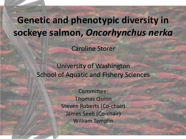Genetic and phenotypic diversity insockeye salmon, Oncorhynchus nerka                Caroline Storer           University ...