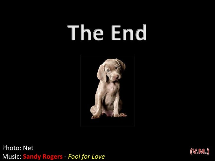 The End<br />Photo: Net<br />Music: Sandy Rogers - Fool for Love<br />(V.M.)<br />