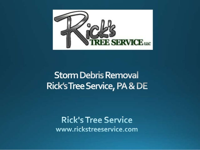 Storm Debris Removal   Rick's Tree Service, PA & DE