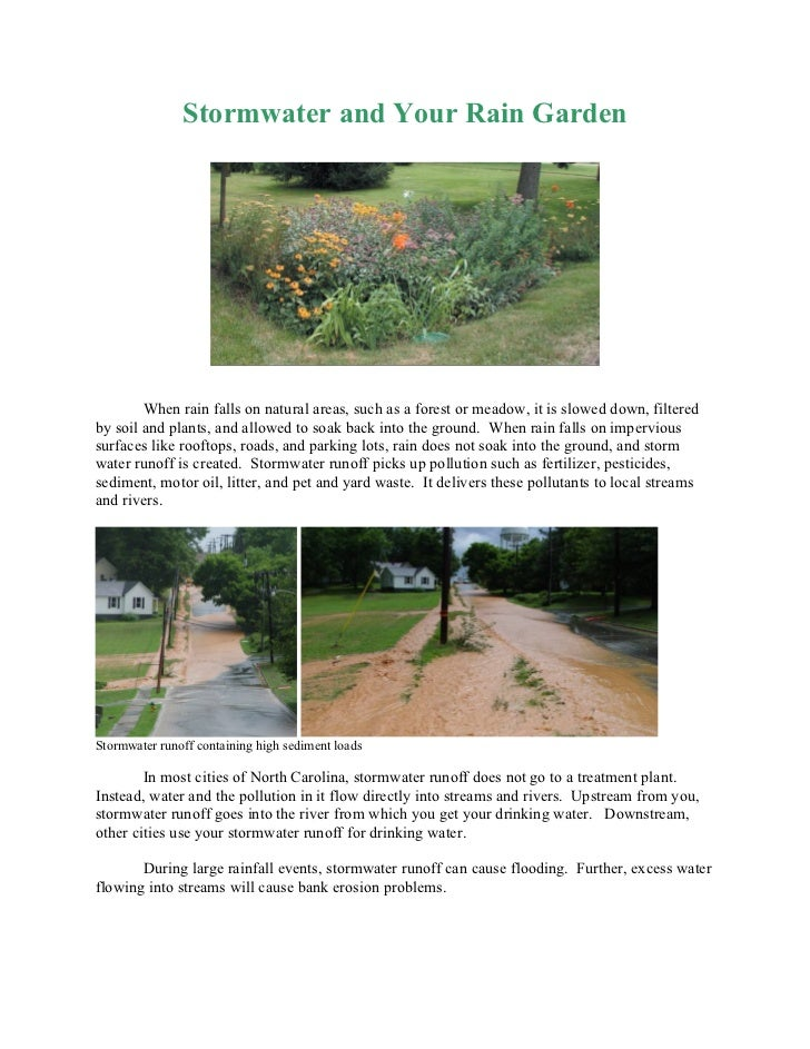 Stormwater and Your Rain Garden        When rain falls on natural areas, such as a forest or meadow, it is slowed down, fi...