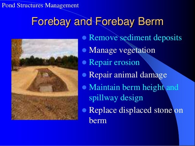 Stormwater Pond Structures Problems And Issues
