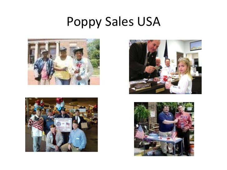 Story of the memorial day poppy the infamous wearing the poppy 16 publicscrutiny Gallery