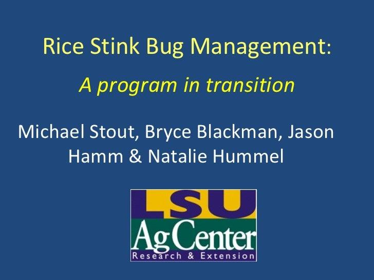 Rice Stink Bug Management : A program in transition Michael Stout, Bryce Blackman, Jason Hamm & Natalie Hummel