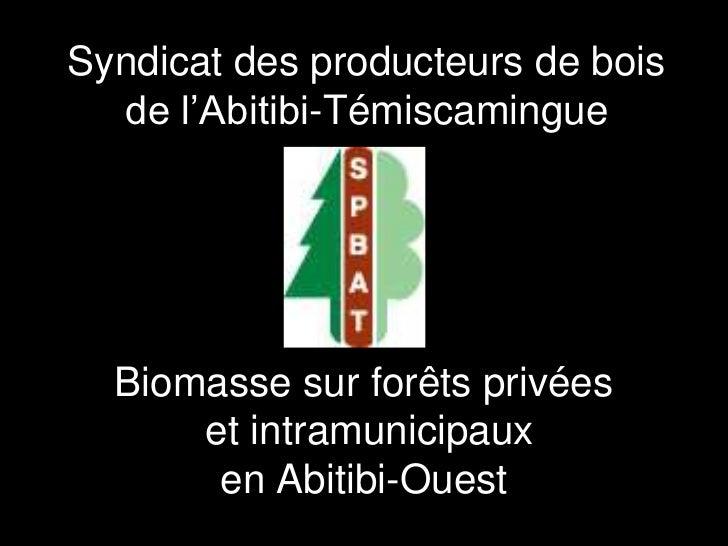 Syndicat des producteurs de bois  de l'Abitibi-Témiscamingue  Biomasse sur forêts privées      et intramunicipaux       en...