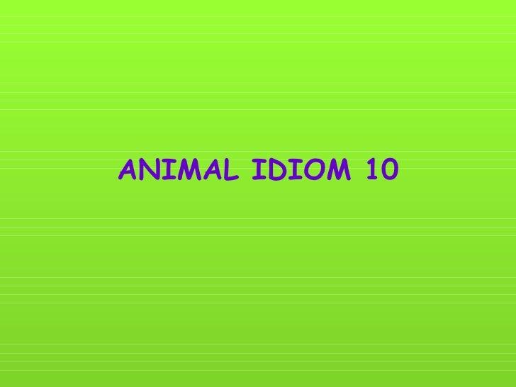 ANIMAL IDIOM 10