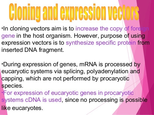 Site-directed mutation  The mutation is caused by in vitro change directed at a specific site in a DNA molecule.  The DN...