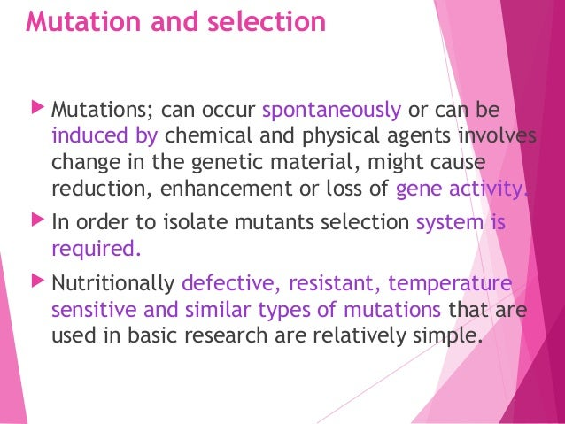  The establishment of selection system for mutations which aim to improve the yield in the production of given primary an...