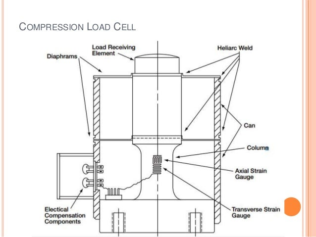Strain gauge loadcell ppt foil strain gauge ccuart Images