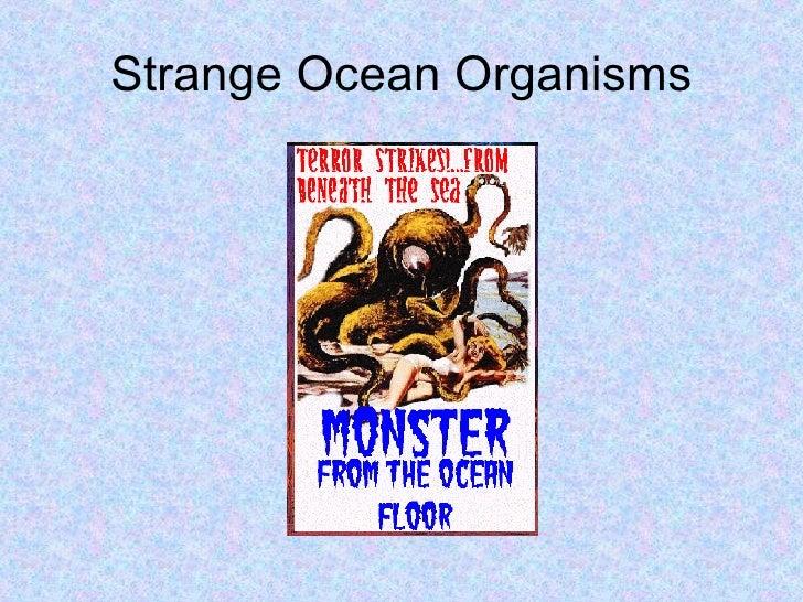 Strange Ocean Organisms