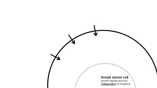 breast cancer cellgrowth signals becomeindependent of receptors