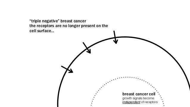 """""""triple negative"""" breast cancerthe receptors are no longer present on thecell surface...                                  ..."""
