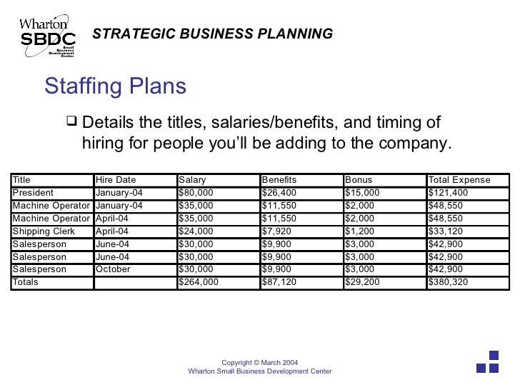 8+ Staffing Plan Template – PDF, DOC, Xlsx