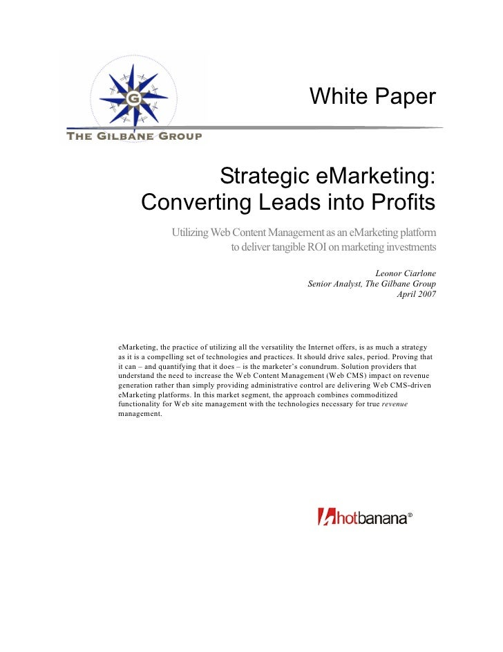 White Paper                 Strategic eMarketing:        Converting Leads into Profits                  Utilizing Web Cont...