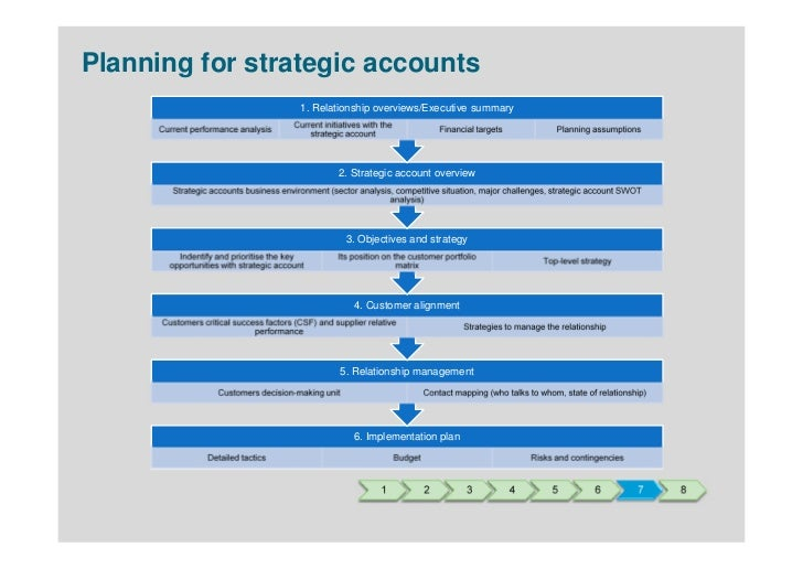 plan template strategic account assess customers business download ...