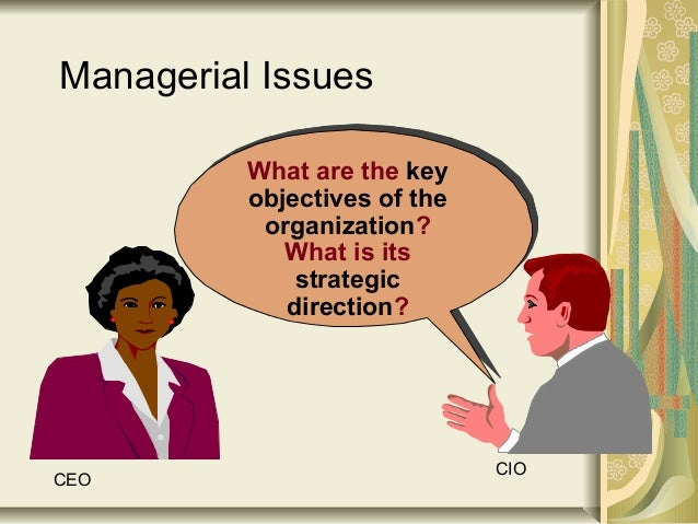 What are the key objectives of the organization? What is its strategic direction? Managerial Issues CEO CIO